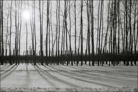 rusia-invierno.jpg