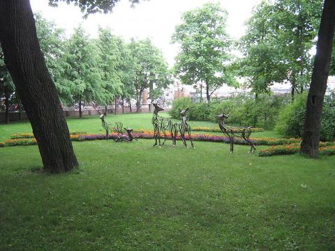 naturaleza-san-petersburgo.jpg